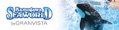 kamo-seaworld-banner.png